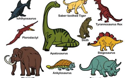 Learn about Dinosaurs
