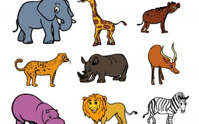 Learn about Safari Animals
